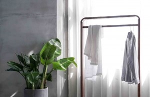 What is Feng Shui and How to Utilize it