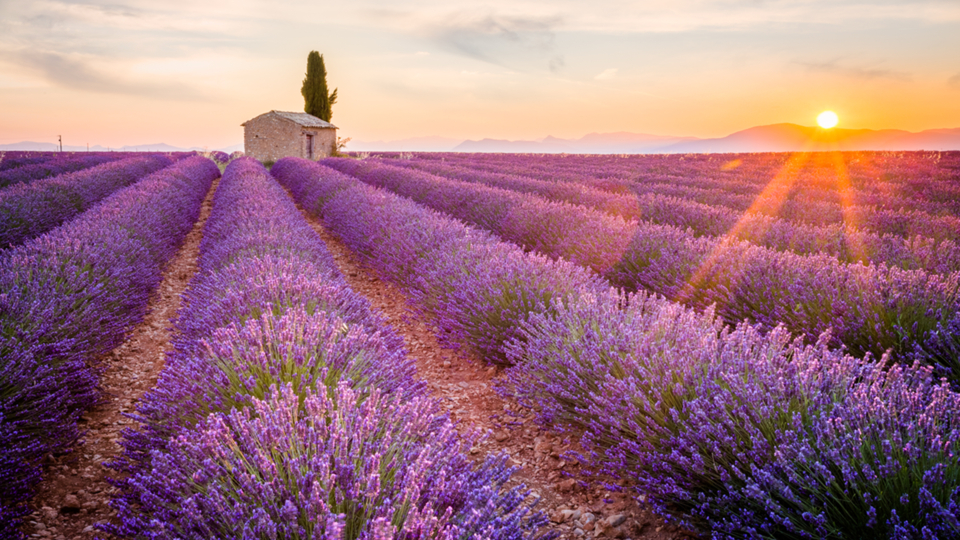 Luxury Accommodation Provence & Var